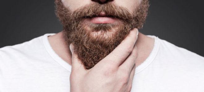 Виды бороды у мужчин