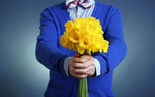 Цветочный этикет — какие цветы подарить девушке в зависимости от ситуации?