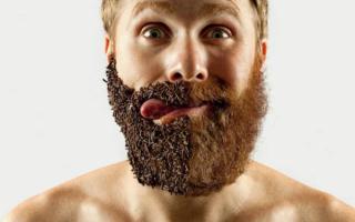 Как отрастить бороду, если она не растет — советы парням