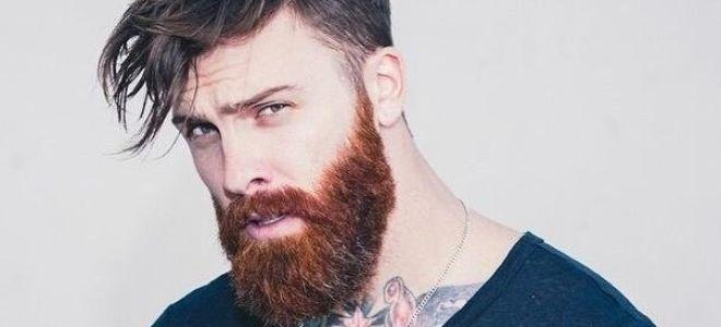 Основные виды бороды и их фото. Выбор формы по типу лица