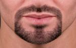 Борода эспаньолка — особенности и виды, как сделать в домашних условиях