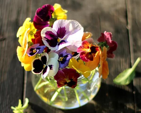 Цветочный этикет — какие цветы подарить девушке в зависимости от ситуации?1