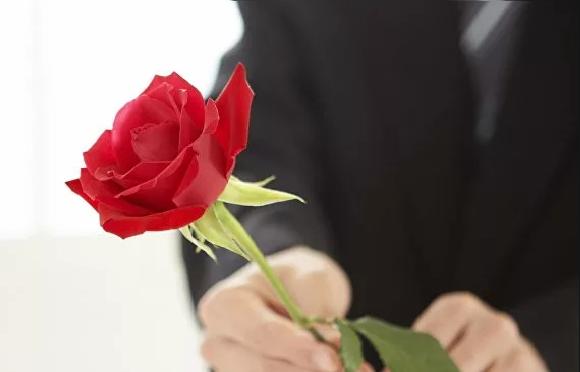 Цветочный этикет — какие цветы подарить девушке в зависимости от ситуации?6